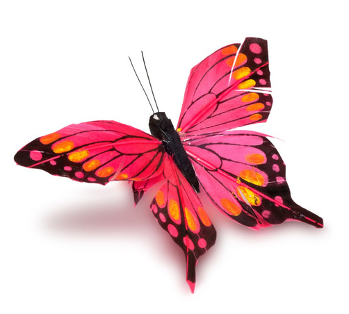 Butterfly Clone