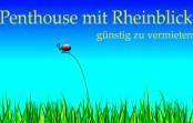 Penthouse mit Rheinblick
