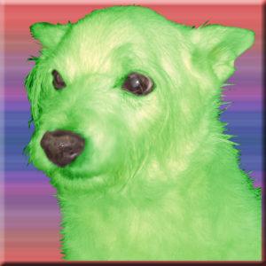 oesel-green