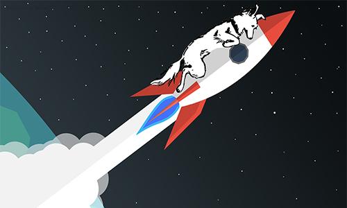 Øsel über die Wirkung von Raketentreibstoff!