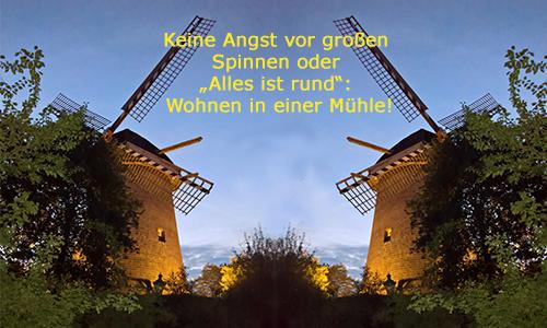 """Keine Angst vor großen Spinnen oder """"Alles ist rund"""": Wohnen in einer Mühle!"""